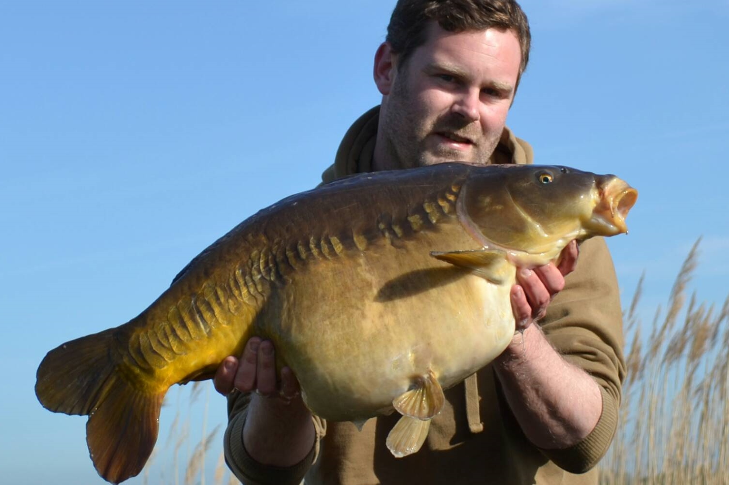 This was soon followed by this chunky 26lb linear
