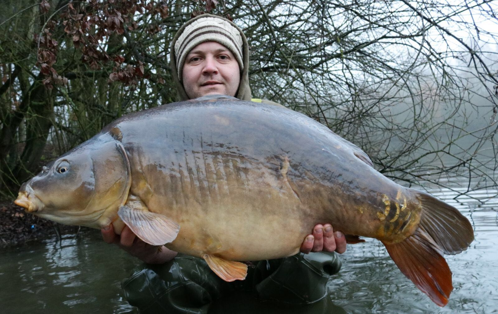 Only Fools and Carpy's